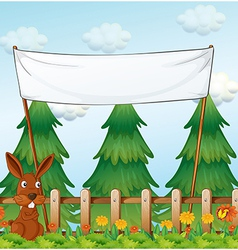 A bunny at the garden below the empty banner vector image vector image