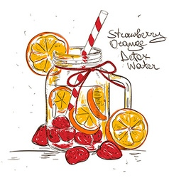 Sketch of strawberry orange detox water vector