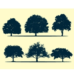 Oak tree silhouette vector