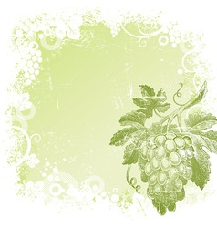 Hand drawn bunch of grapes vector