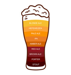 Beer glass craft vintage type infographic chart vector