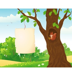 Forest placard and squirrel vector