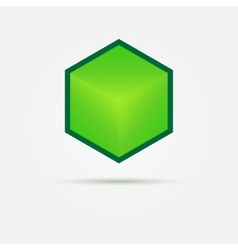 Isometric Green 3d cube Logo vector image