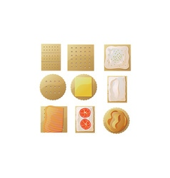Crackers and cheese icons vector