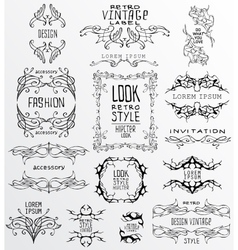 Set of calligraphic and floral vector