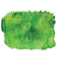 grass watercolour vector image