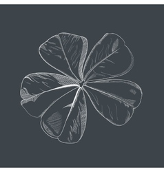 hand-drawing flower vector image