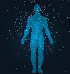 Humanbody vector