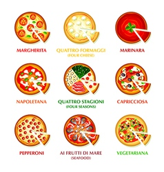 Italian pizza icons vector image