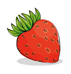 strawberry fresh and healthy fruit vector image vector image