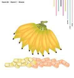 Sweet banana with vitamin b6 and vitamin c vector