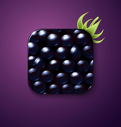 Blackberry texture icon stylized like mobile app vector