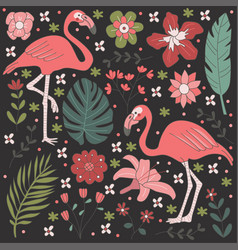 Flamingo flower in black backgound vector