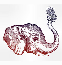 decorative profile elephant profile with flowers vector image