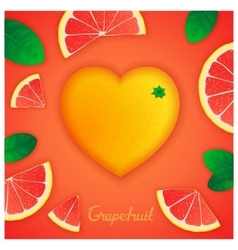 Grapefruit art composition vector