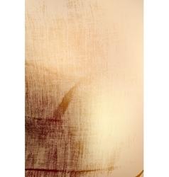 Linen Distress Texture vector image