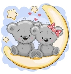 Two bears on the moon vector
