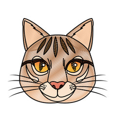 head feline wildlife stripes animal icon vector image vector image