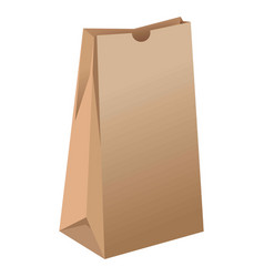 Brown empty paper package for grocery products vector