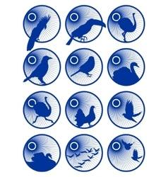 Icons with birds-1 vector image