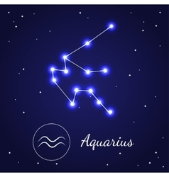 Aquarius zodiac sign stars on the cosmic sky vector