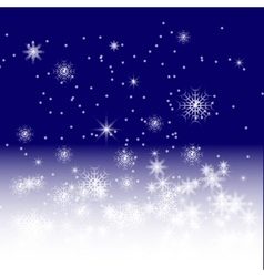 blue winter night vector image
