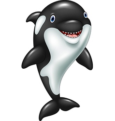 Cartoon funny killer whale standing vector image vector image