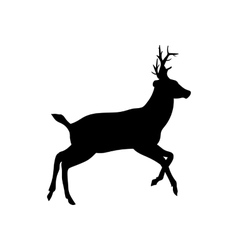 Deer on a white background vector