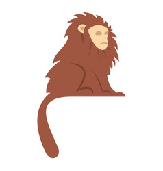Monkey with long brown hair i icon isolated vector