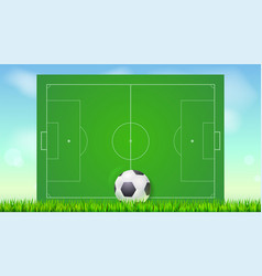 Soccer field with grass and ball on blue backdrop vector
