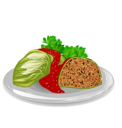 cabbage roll vector image