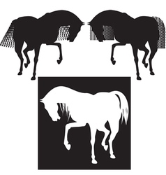 silhouette horses vector image
