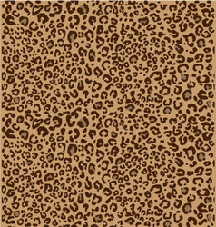 Cheetah seamless pattern 3 colors vector