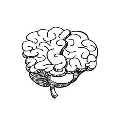 Brain icon human organ design graphic vector