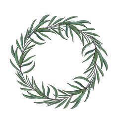 beautiful elegant hand drawn melaleuca twig vector image vector image