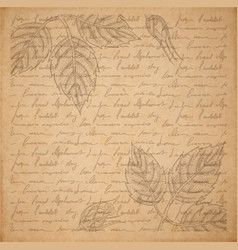 vintage old paper texture engraved slyle rose vector image vector image