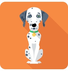 Dog dalmatian icon flat design vector