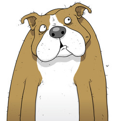 British bulldog cartoon character vector