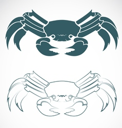 image of an crab vector image