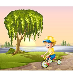 A little boy biking vector