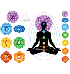 silhouette of man with symbols of chakra vector image