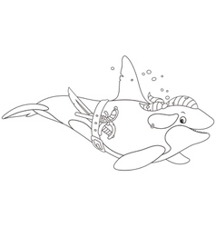 Killer whale pirate vector