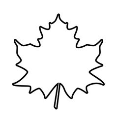 Maple leaf line icon vector