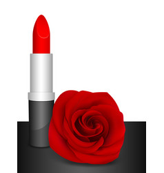red lipstick and red rose vector image vector image