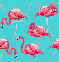 flamingo seamless vector image