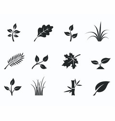 black monochrome floral icon set vector image vector image