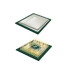 Central processing unit chips on white background vector
