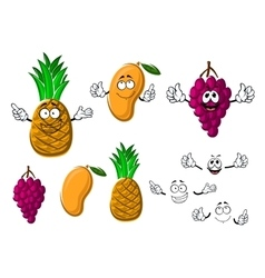 Ripe grape mango and pineapple fruits vector