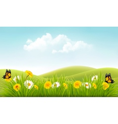 Beautiful summer landscape background vector