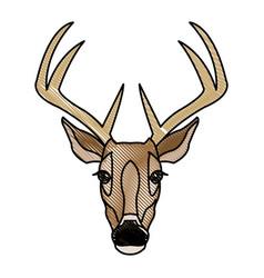 deer antlers animal wildlife image vector image vector image
